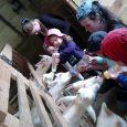 « En Mai, fais ce qu'il te plaît », c'est ce que font les enfants et leurs accompagnants chaque semaine au Relais d'Assistantes Maternelles de la Communauté de Communes Pontgibaud […]