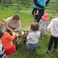 Mardi 7 juin, une quinzaine d'enfants du Relais d'Assistantes Maternelles de la Communauté de Communes Pontgibaud Sioule et Volcans accompagnés de leur assistante maternelle ou parents se sont rendus à […]