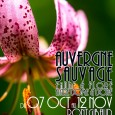 Du 7 Octobre au 12 Novembre exposition ELYAS SAENS Entrée libre